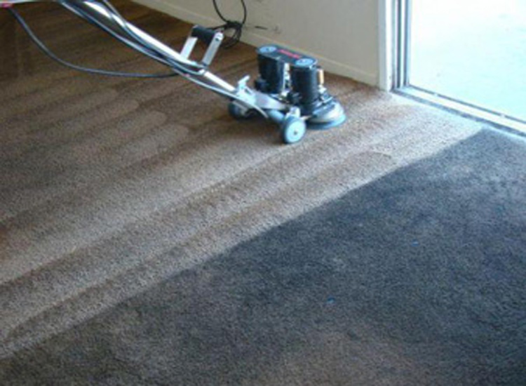How To Clean And Disinfect Your Carpet & Rugs